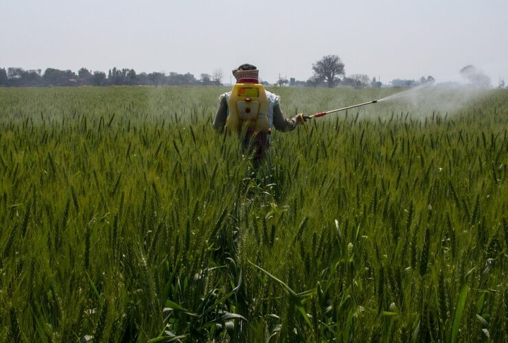 Feed back on the government action to ban 27 pesticides